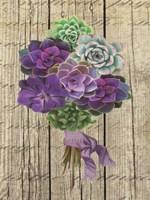 Framed Succulent Bouquet III