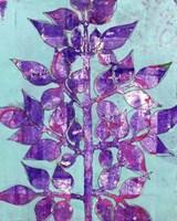 Framed Purple Planta II