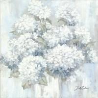 Framed White Hydrangeas