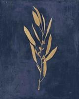 Framed Botanical Study I Gold Navy