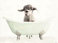 Framed Vintage Tub with Goat