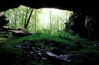 Framed Entrance to Russell Cave National Monument, Alabama