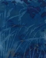 Framed Enchanted Cyanotype XI