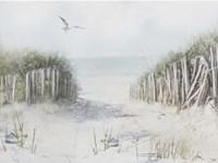 Framed Beach Morning