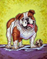 Framed Bulldog and Baseball