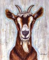 Framed Old Goat