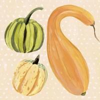 Framed Decorative Gourd I