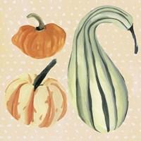 Framed Decorative Gourd III