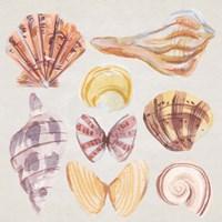Framed Ocean Sounds II