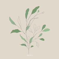 Framed Wispy Leaf II