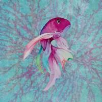 Framed Fish On Coral I