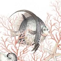 Framed Ocean Fish On Coral