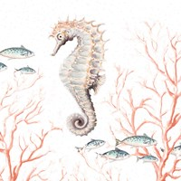 Framed Seahorse On Coral