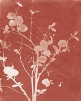 Framed Enchanted Fall Cyanotype VI