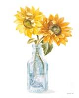 Framed Fresh Cut Sunflowers I