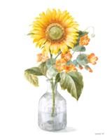 Framed Fresh Cut Sunflowers II