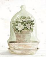 Framed Floral Cloche I