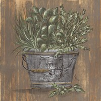 Framed Herb Trio in Pail
