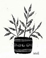Framed Botanical Sketches IX