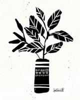 Framed Botanical Sketches VI