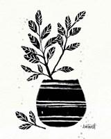 Framed Botanical Sketches VII
