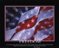 Framed Patriotic-Freedom