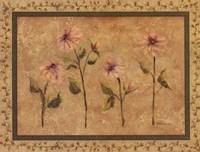 Framed Antique Floral