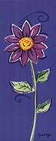 Framed Purple Daisy