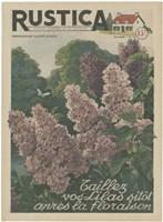 Framed Plantez Des Lilacs