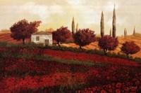 Framed Apapaveri Toscana II