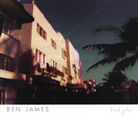 Framed Black Palms