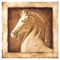 Framed Equus