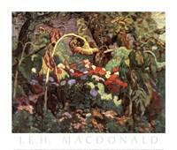 Framed Tangled Garden