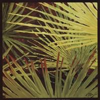 Framed Three Palms, Panel A