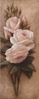 Framed Pink Petals I