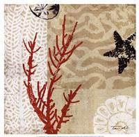Framed Coral Impressions I