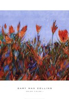 Framed Color Fields I