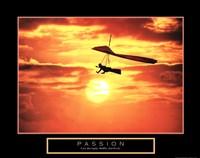 Framed Passion - Hang Glider