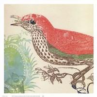 Framed Red Bird