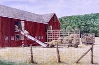 Framed Hay Day