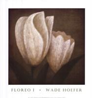 Framed Floreo I