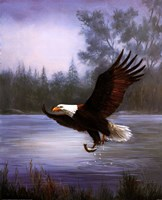Framed Eagle Fishing