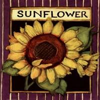 Framed Sunflower Seed Packet