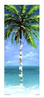 Framed Coastal Palm III