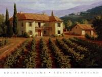 Framed Tuscan Vineyard