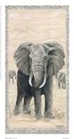 Framed African Legend I
