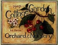 Framed Cottage Garden III