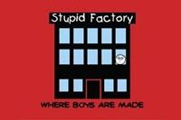 Framed Boys Are Stupid-Stupid Factory