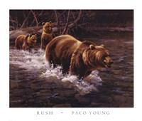 Framed Rush