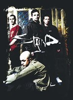Framed Staind - Group Shot